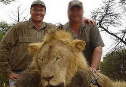 Walter Palmer e il leone Cecil ucciso
