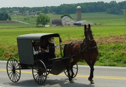 Un calesse Amish (Foto Wikipedia)