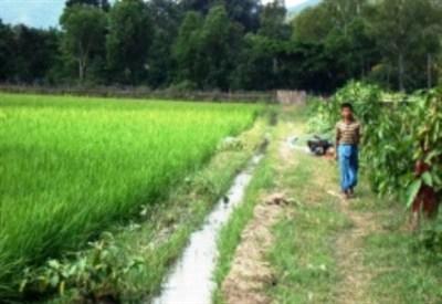 Myanmar (AVSI)