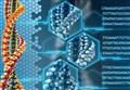 SCIENZAinATTO/ Genoma umano e nuova biologia