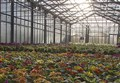 SCIENZ@SCUOLA/ «Fare scienza» a scuola per conoscere il mondo vegetale. Osservazioni ed esperimenti nella Seconda Primaria