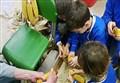 SCIENZ@SCUOLA/ Dalla pianta di Mais alla scoperta dei Semi. Fare Scienza alla Scuola Primaria