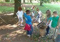 SCIENZ@SCUOLA/ L'albero in ogni sua parte. Fare Scienza nella Classe Seconda della Scuola Primaria