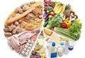 SCIENZAinATTO/ Luce, pane, vita. Il senso del metabolismo