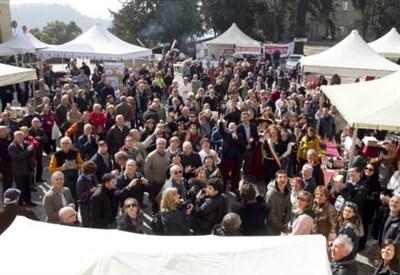 Vignale Monferrato, la festa