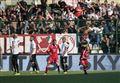 Diretta / Bari Cittadella (risultato live 2-1) streaming video e tv: Improta per i galletti!