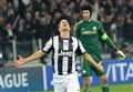 Calciomercato Juventus/ News, Bucchioni: Giovinco resta per la Champions. Oggi 28 novembre 2014 (analisi e commenti in diretta)
