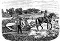 SCIENZA&STORIA/ Breve Storia delle Macchine Agricole