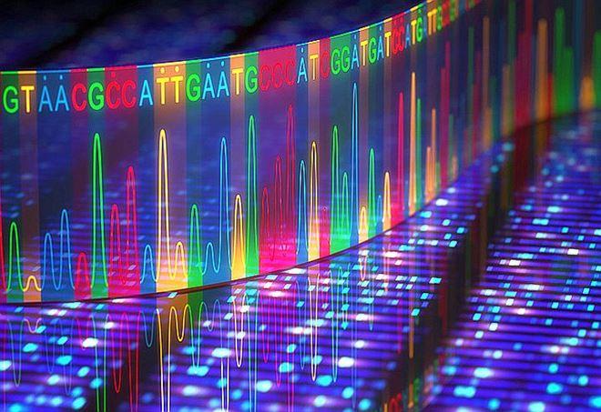 Rappresentazione in 3D di una sequenziazione del DNA effettuata con elettroforesi