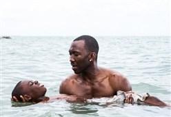 MOONLIGHT/ Il film a tre capitoli in gara per otto Oscar
