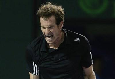 Andy Murray, 27 anni, numero 4 ATP (dall'account ufficiale facebook.com/MiamiOpenTennis)