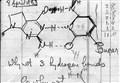 SCIENZA&STORIA/ La Doppia Elica. Cinquant'anni con il DNA