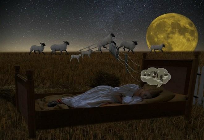 Imparare dormendo: si può