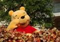 SFOOTING/ Winnie the Pooh compie 90 anni e si candida al Nobel 2017 per la Letteratura