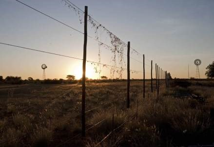 AFRICA/ Fighting the Injustice of Land-Grabs