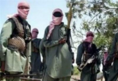 Guerriglieri di Boko Haram