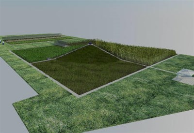 Rendering del campo dimostrativo presso il Parco Tecnologico Padano