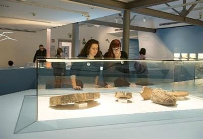 """La mostra """"Frozen Stories"""" copyright: © Museo Archeologico dell'Alto Adige/foto-dpi.com"""