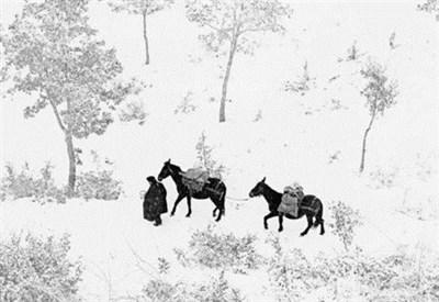 """Fotografia da """"Ombrie"""" di Fulvio Roiter (Immagine dal web)"""