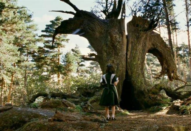 Risultati immagini per il labirinto del fauno film 2006