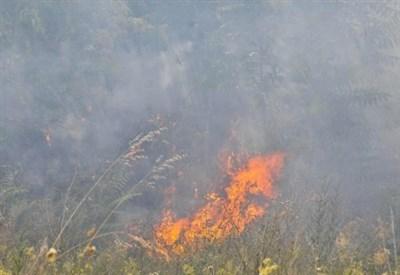 Incendio, immagini di repertorio (Foto: LaPresse)