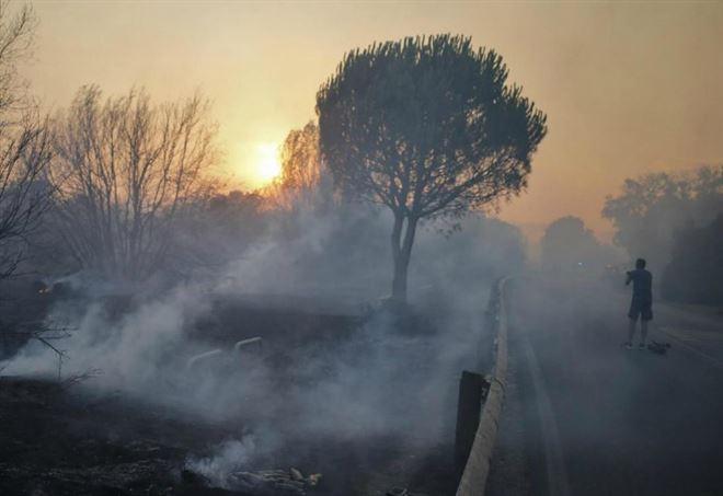 Incendio nella pineta di Castelfusano (LaPresse)