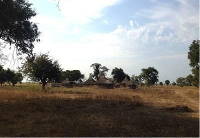 Una foto da Juba