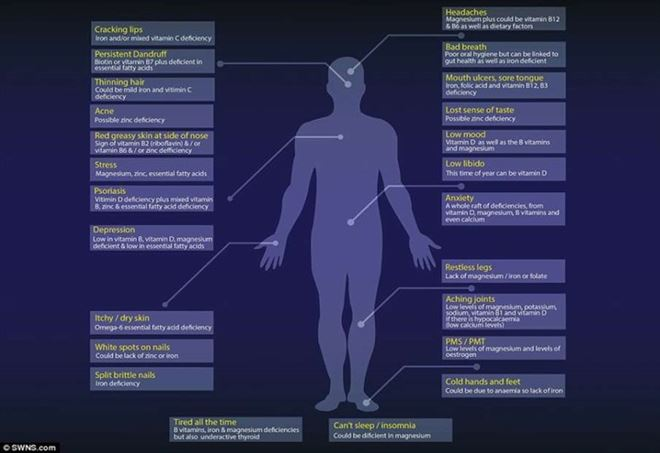 Cibi usati come medicine, mappa sul corpo umano