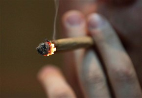 DROGA LIBERA/ Cattarina: lo Stato che legalizza la marijuana si mette sul piano della mafia