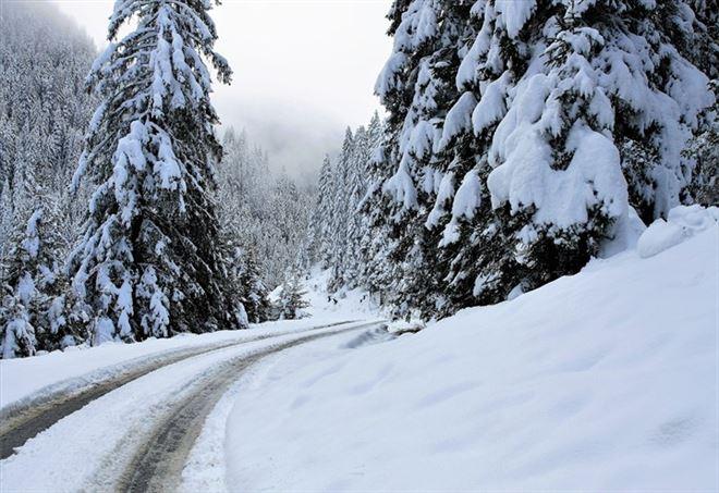 Allerta neve (foto da Pixabay)