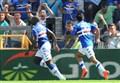 Calciomercato Sampdoria/ News, Sambuco: Mihajlovic come Conte. Okaka recuperato e Gabbiadini... (esclusiva)