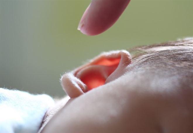 L'interno di un orecchio