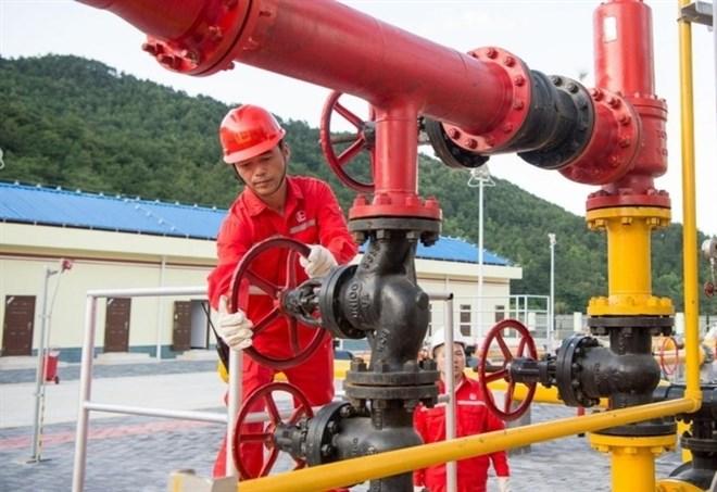 Suore contro il petrolio in Pennsylvania (foto LaPresse)