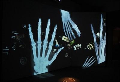 La mostra Balle di Scienza accompagna con queste immagini in movimento la storia della scoperta casuale dei raggi X. (Foto G. Fochi)