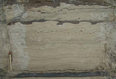 Traccia stratigrafica (credit: AIQUA)
