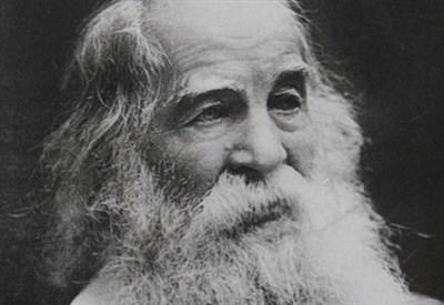 Walt Whitman (1819-1892) (Immagine d'archivio)