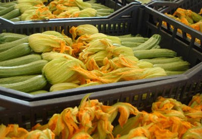 Le zucchine piemontesi