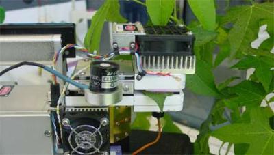 Una fase delle ricerche sulle piante effettuate dal CNR di Bologna (foto CNR)