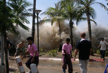 tsunamiR375_30set09.jpg